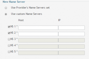 custom and adding new name servers