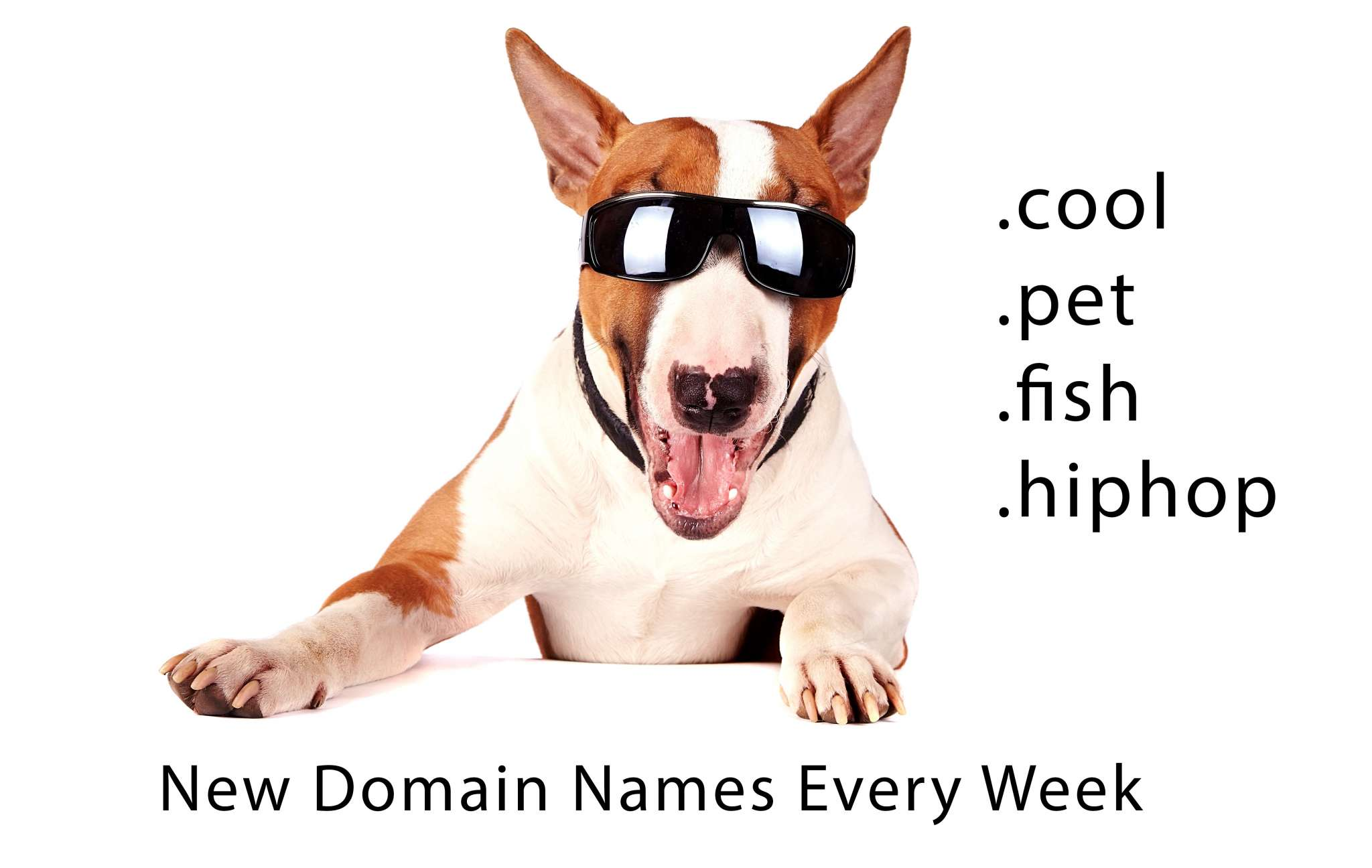pet domain names