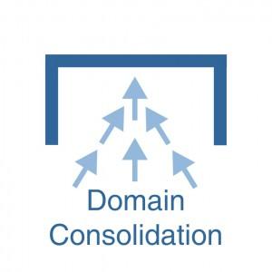 Domain Consolidation