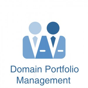 Domain Portfolio Management