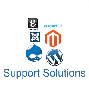Wordpress support solutions